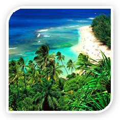 Hawaii tours in USA